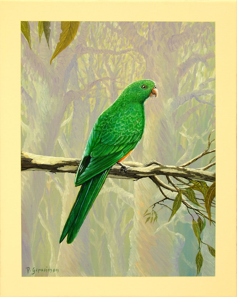 Green parrot painting - photo#20
